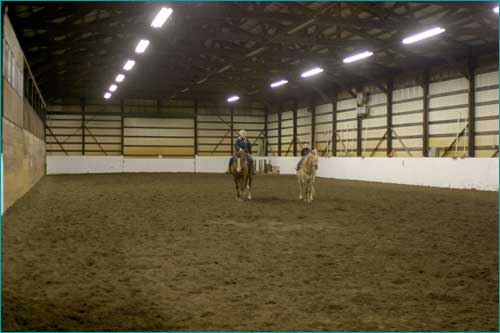 Our indoor arena is 60 x 180 (2855 square feet) and fully enclosed. It has excellent lighting and footing.
