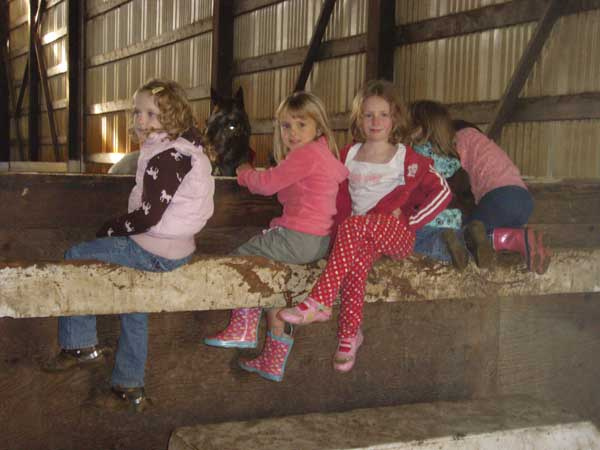 Open arena riding for haul-ins at $5.00 per horse and during designated hours