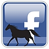 fbhorse